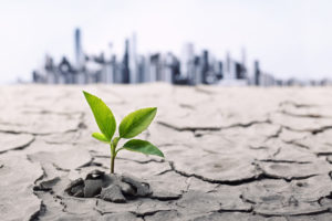 An Environmentally Friendly Business Guaranteed to Grow: Does It Exist? - Accelerated MFG Brokers