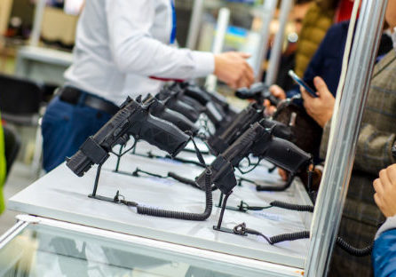 Small Arms Firearm Store
